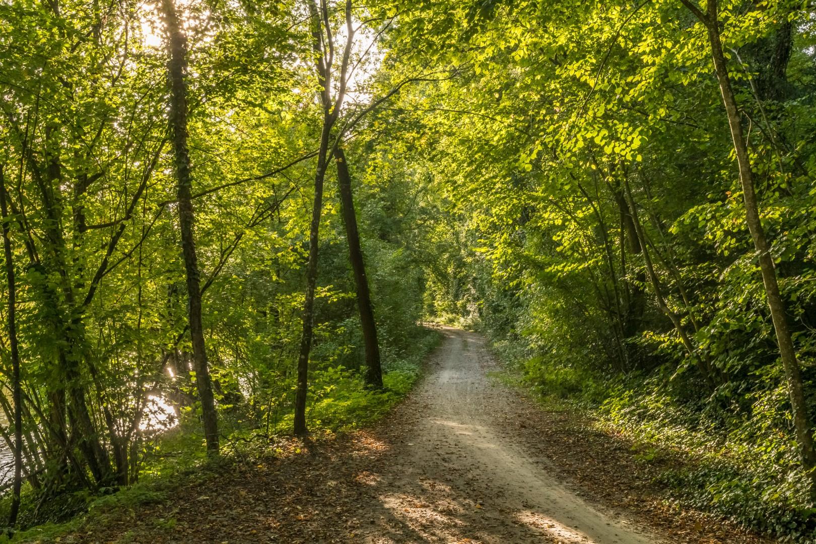 Radweg bei Trostberg
