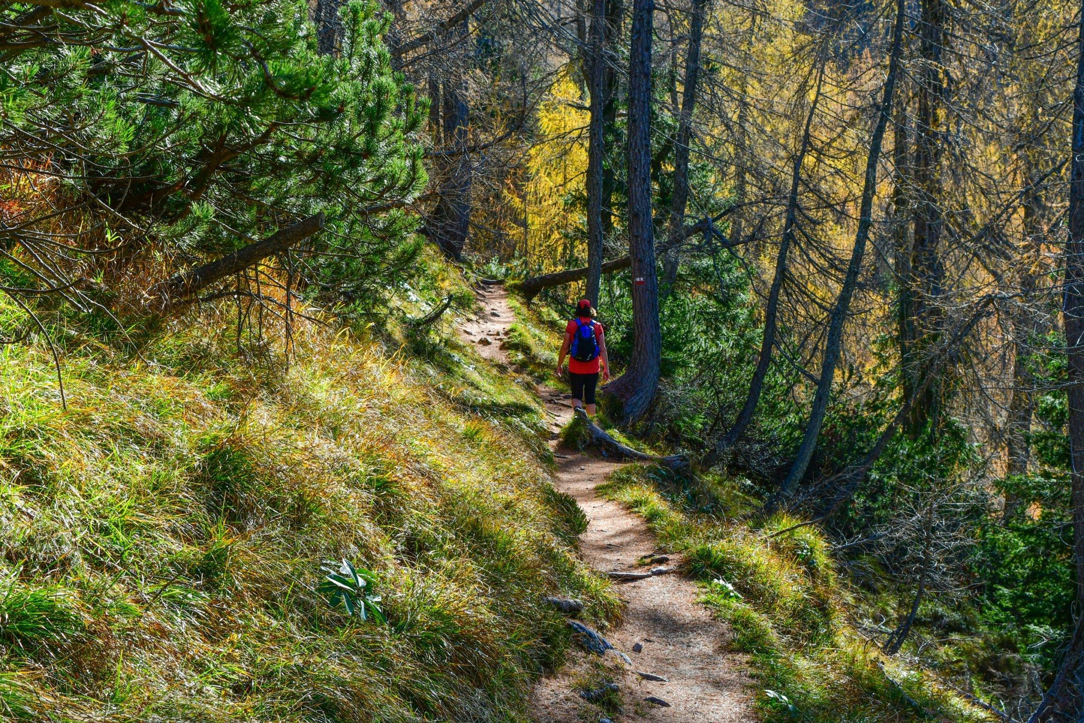 Aufstieg zur Cima del Cacciatore
