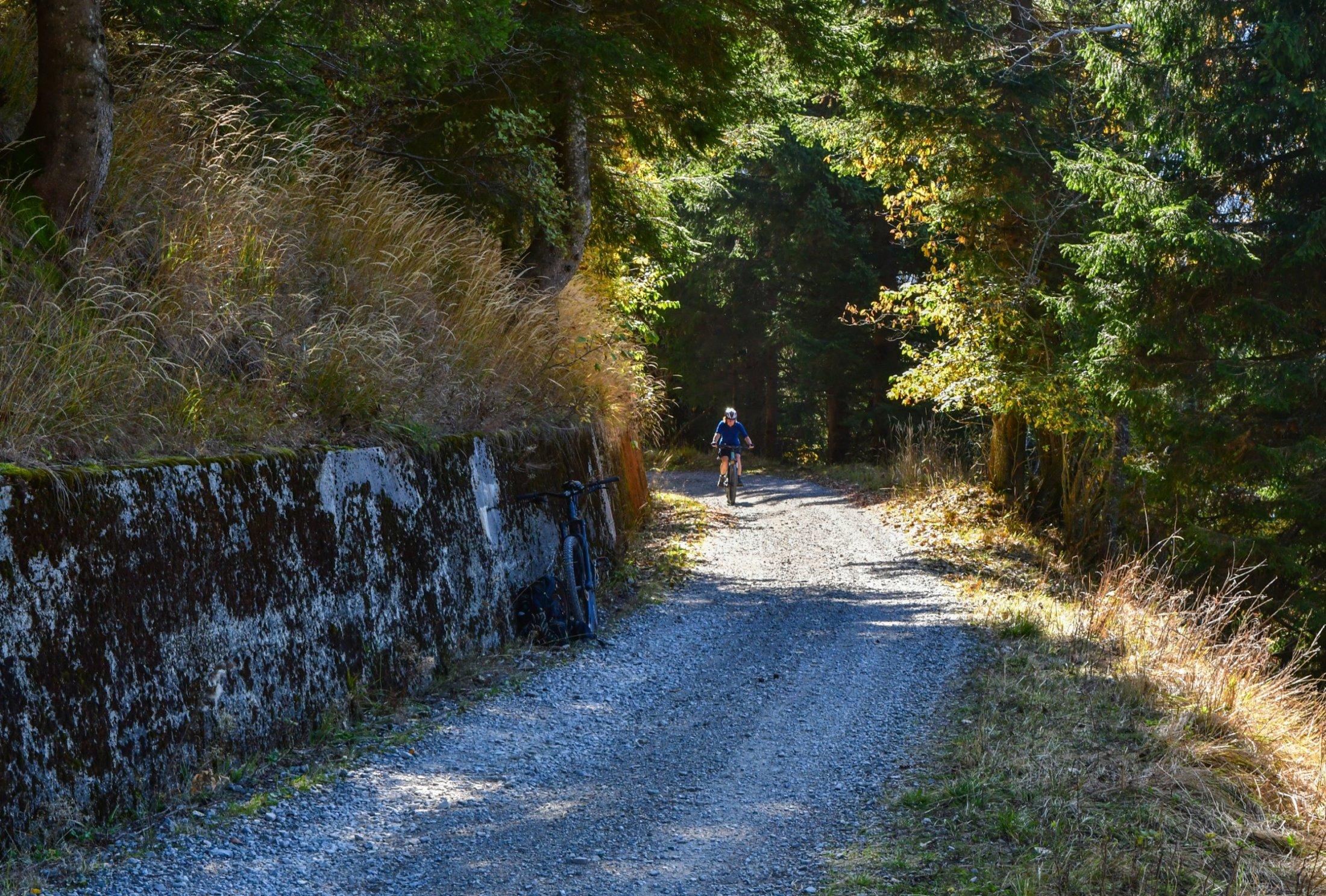 Auffahrt zum Monte Paularo