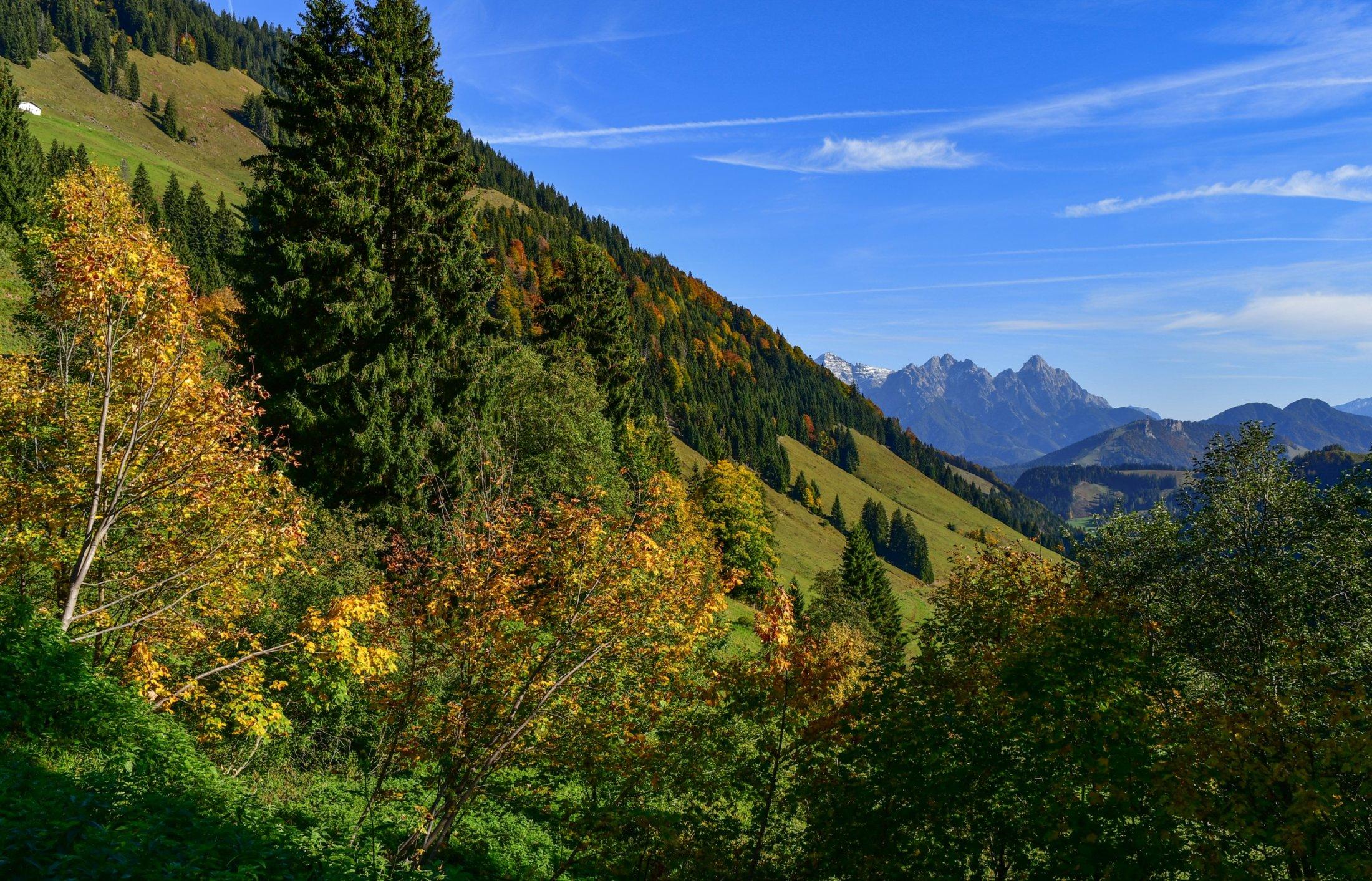 Ausblick auf die Loferer Steinberge bei der Auffahrt