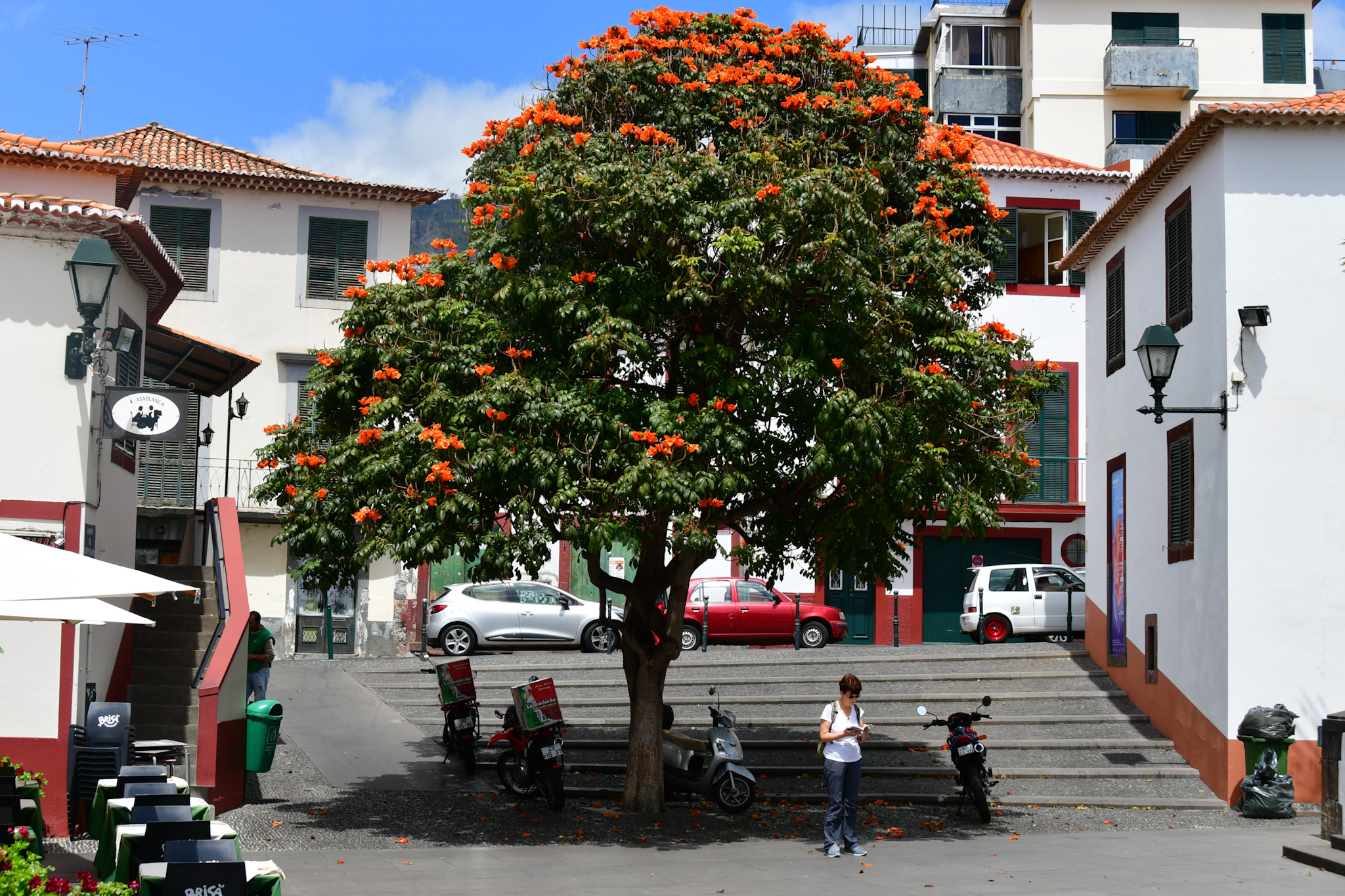 Madeira 20190426 150443