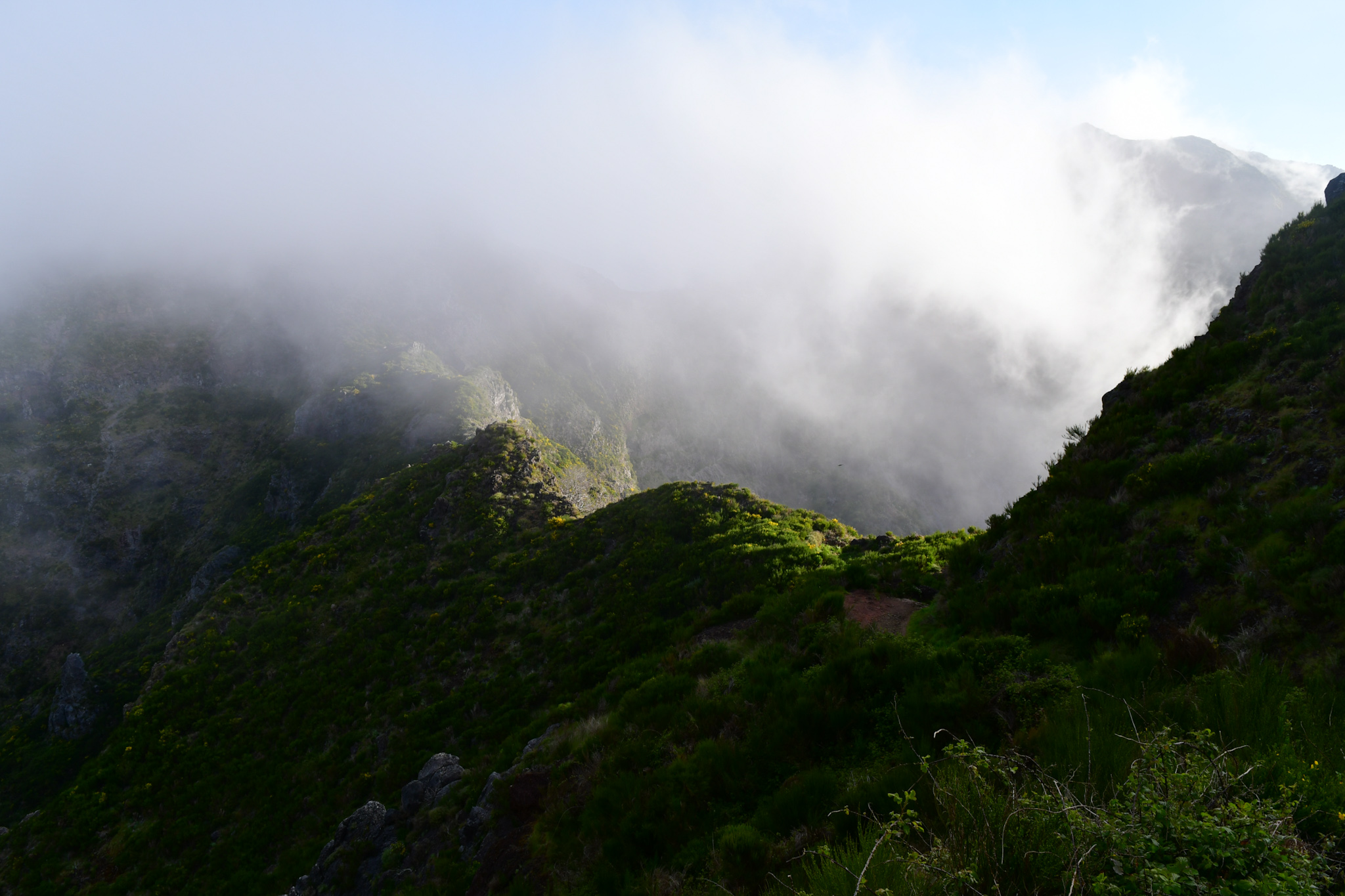 Madeira 20190501 084048