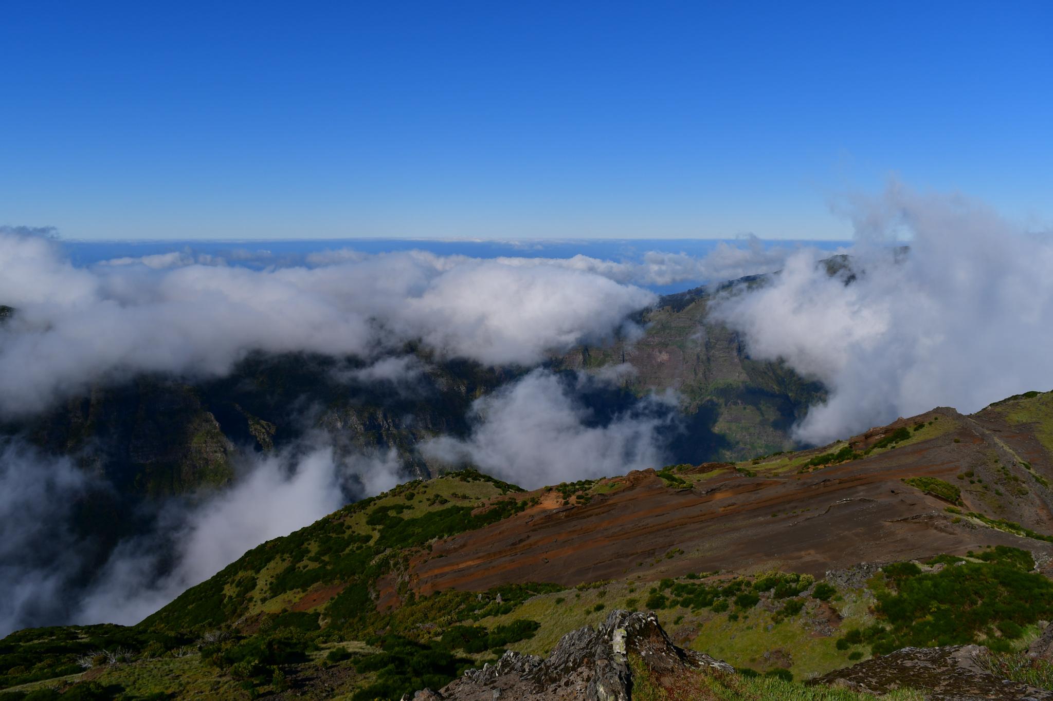 Madeira 20190501 100529