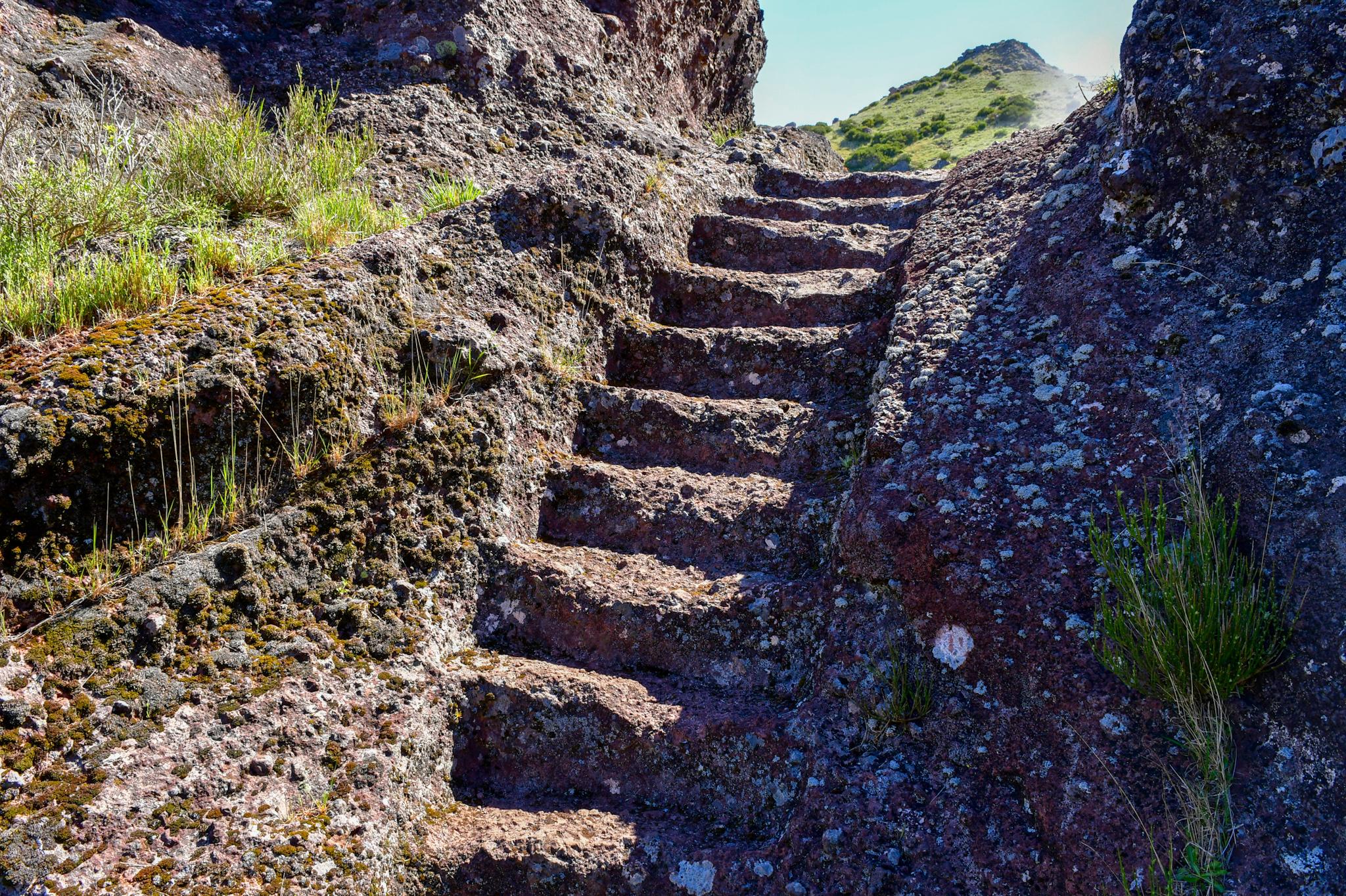 Madeira 20190501 112143