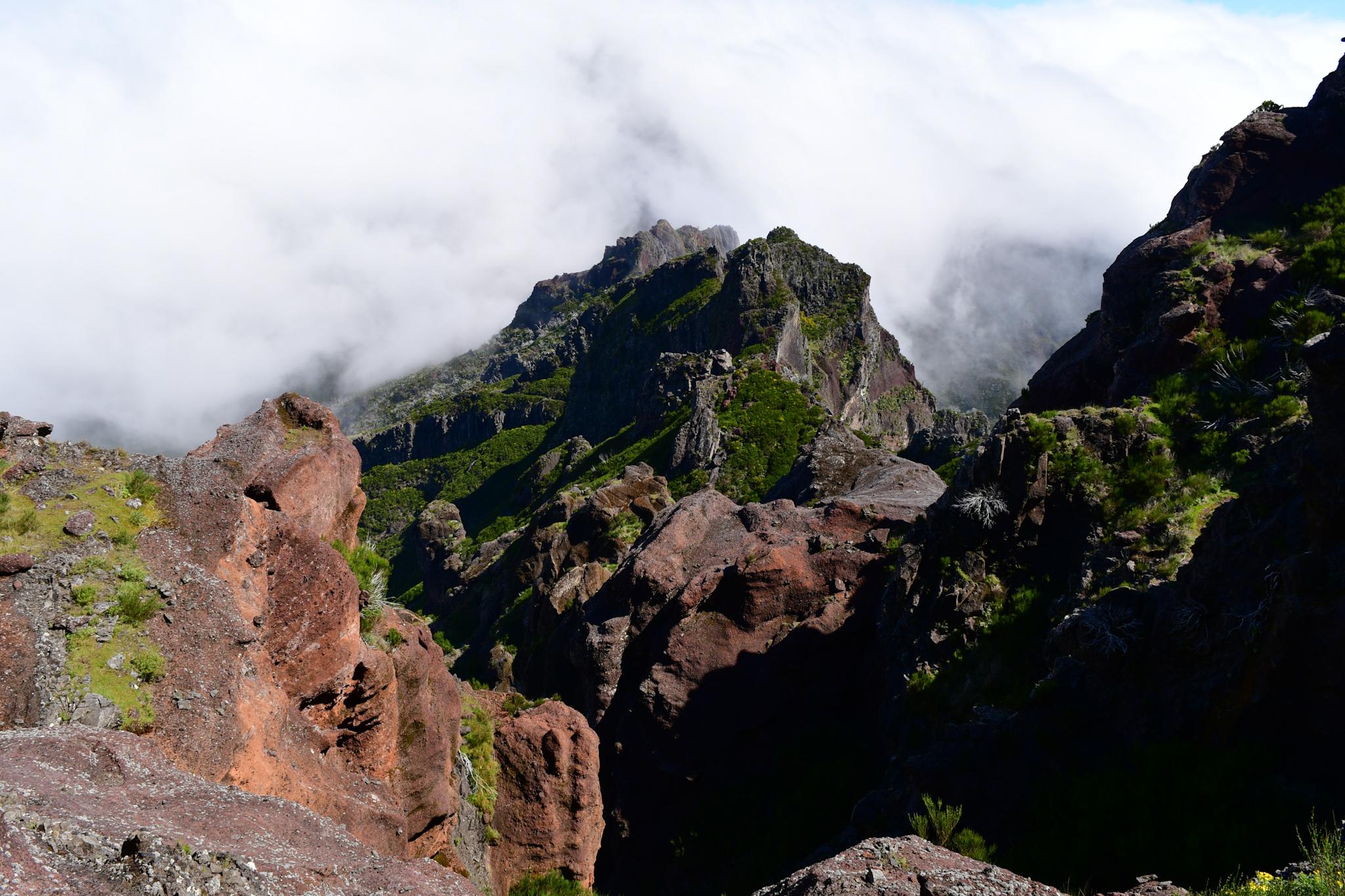 Madeira 20190501 112426
