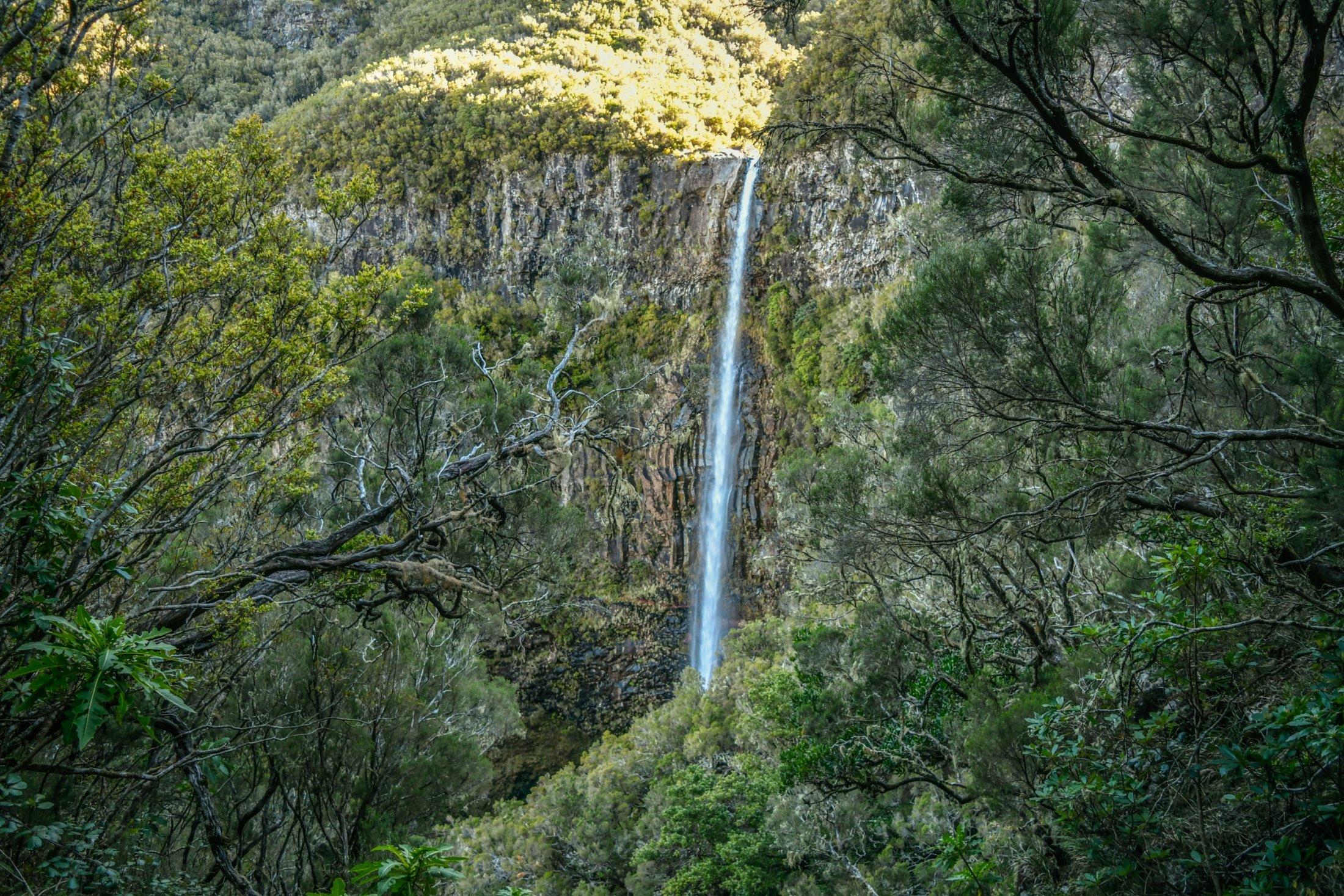 Waterfall into Lago Ventoa