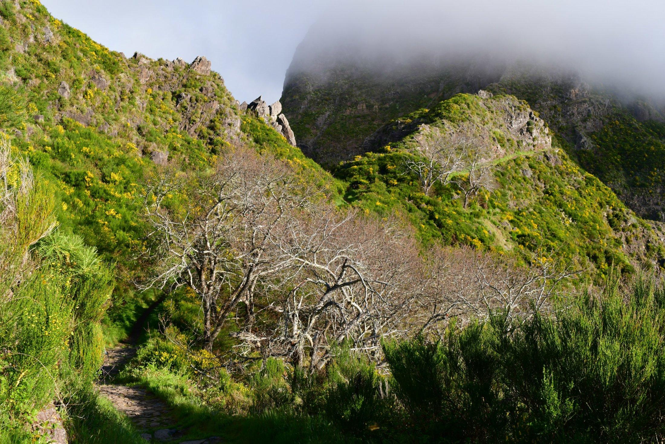 Wanderung zum Pico Grande