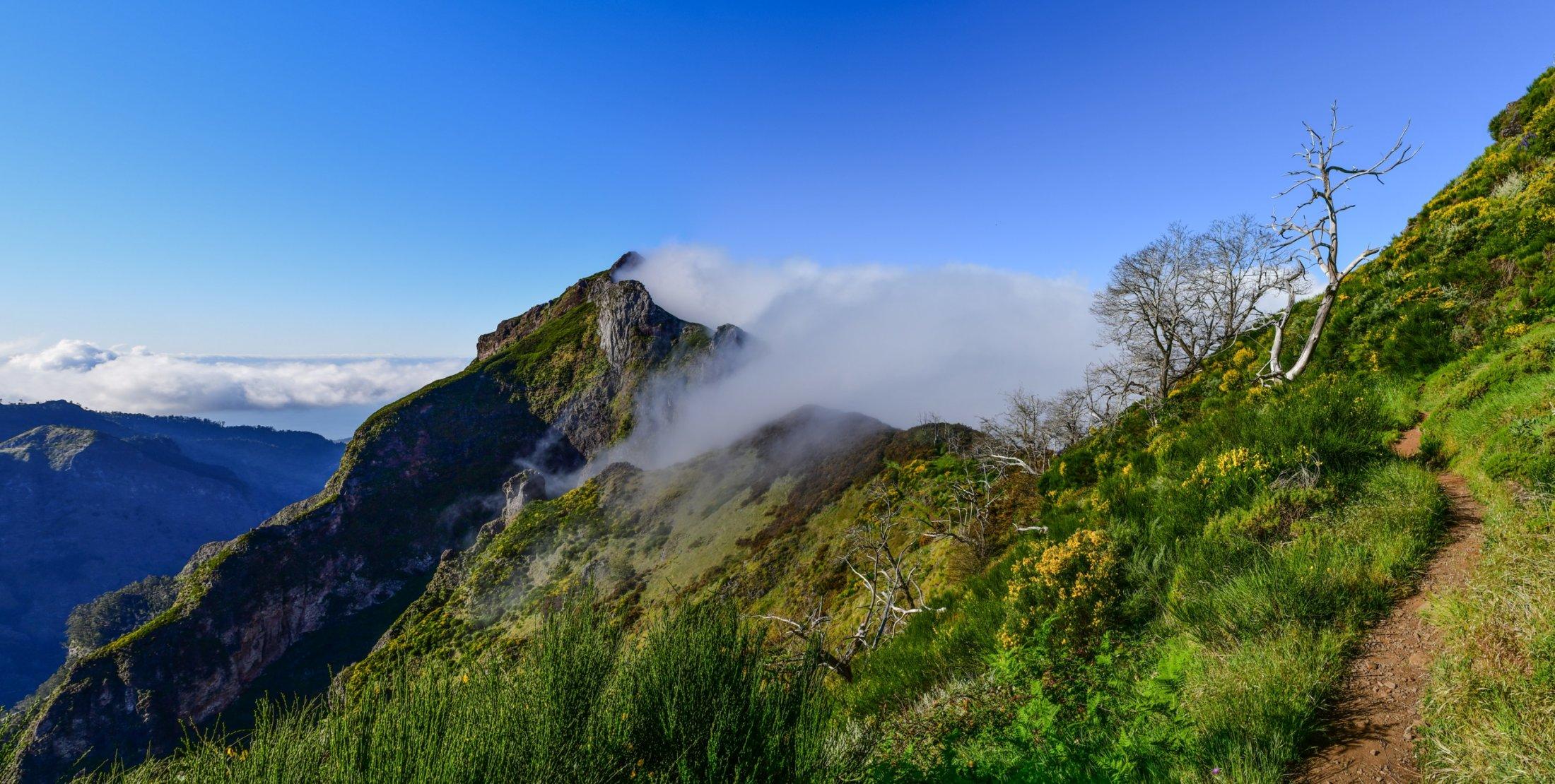 Tramping Pico Grande, Madeira