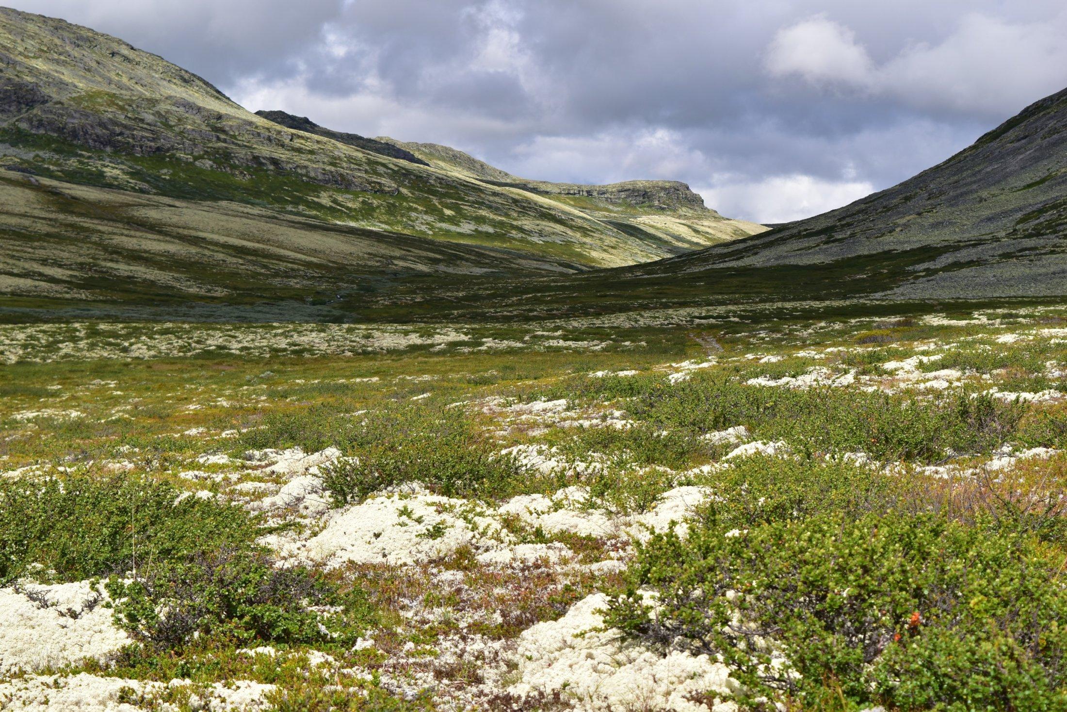 Uralte Landschaften