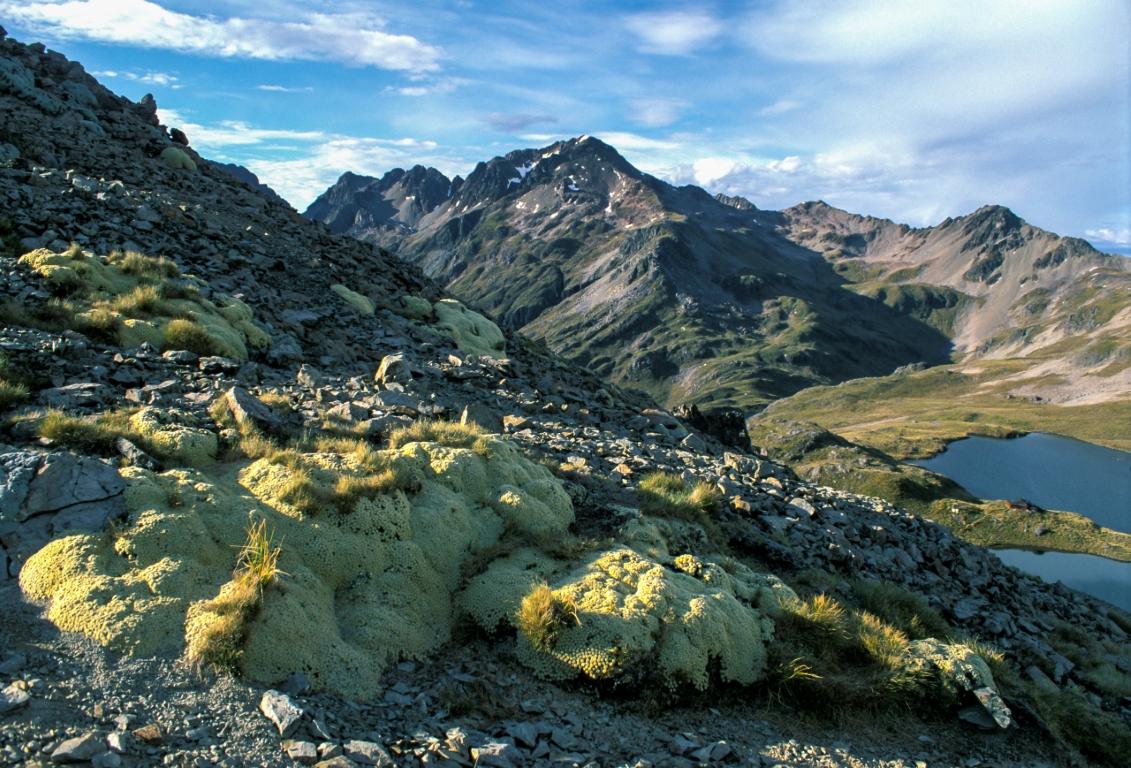 Abstieg zur Angelus Hütte, Mt. Angelus