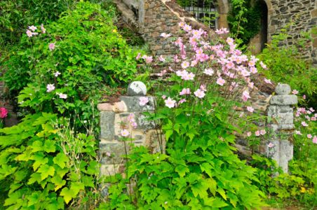 Garden of Abbaye de Beauport, Brittany