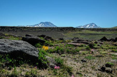 Hochebene mit Vulkanen im Hintergrund