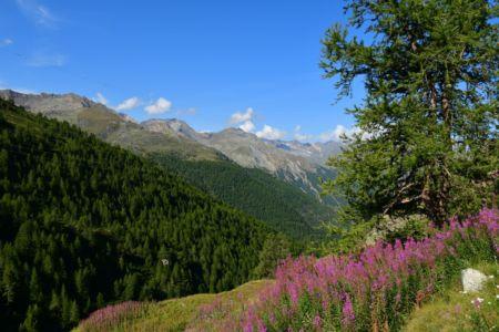 Auffahrt zum Vallone d`Urtier