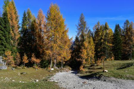 Am Ende des Steilaufstiegs bei der Malga Lussari