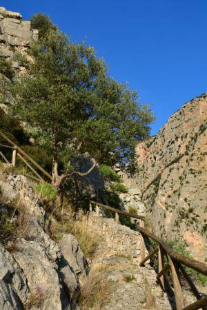 Steiler Aufstieg in der Gole di Raganello