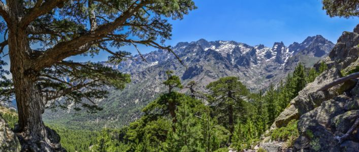 Tramping in Corse, Asco Valley