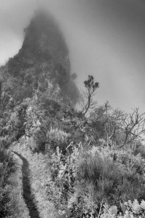 Nebelwanderung ab Boca Encumeada