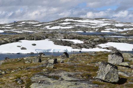 Arktische Landschaft