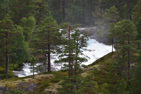 Wasserfall im Fjordland