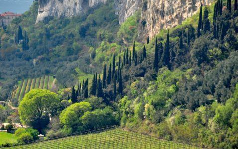 Spring at Lake Garda, close to Brentonico