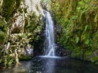 Wasserfälle und Levada im Hochland um Rabacal (Tag 8)
