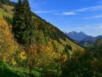 Tourenbericht - Bike-Hike Bike&Hike Tour auf den Karstein in den Kitzbühler Alpen