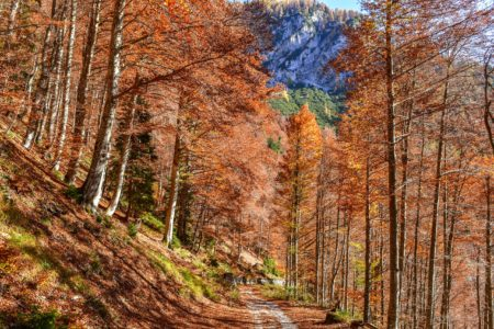 Abfahrt ins Val Saisera