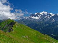 Mont Blanc mit grünen Wiesen