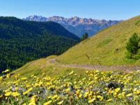 Auffahrt zum Col de Peas mit Blick Süden