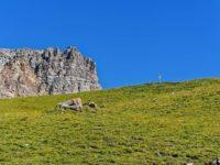 Da oben geht es weiter Richtung Col de Peas