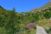Auffahrt zum Rifugio Migliorero