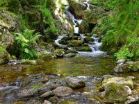 Wasserfall im Wald bei der Abfahrt