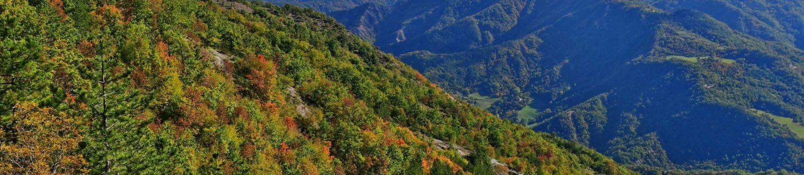 Bike-Tour um den Lago di Ridracoli in der Emilia-Romagna