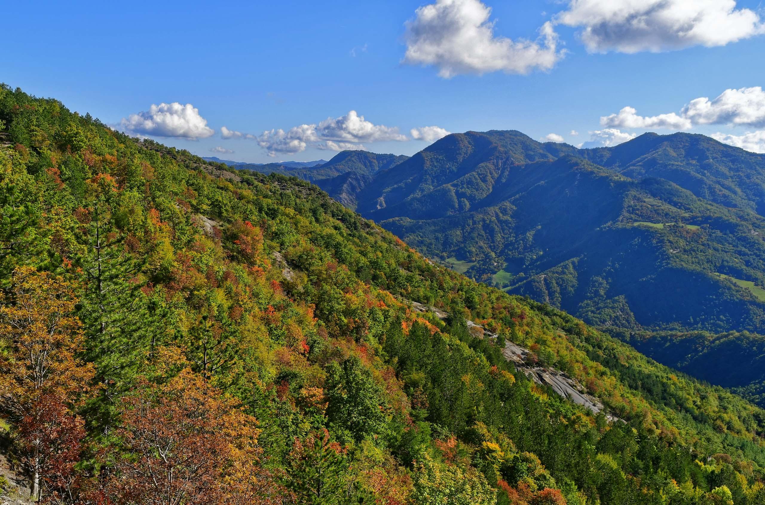 Ausblick auf die Hügel des Foreste Casentinesi im Herbst