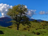 Am Bivacco San Paolo in Alpe