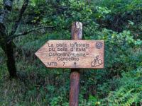 Schönste Wald-MTB-Tour Italiens