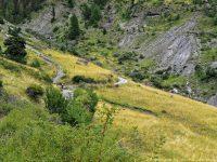 Noch einfache Auffahrt durch Almwiesen