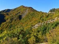 Herbstwald in der Emilia-Romagna