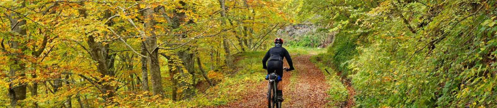 Bike-Tour mit Trailabfahrt bei Corniolo, Emilia-Romagna