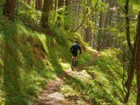 Trail-Abfahrt nach Corniolo