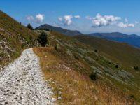 Steiniger Wegabschnitt auf der Südseite