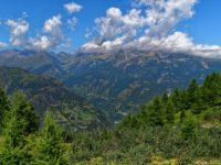 Monte Viso vom Colle Bicocca aus