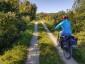 Bike, Chiemgau, Radweg, bike, busch, bush, mensch