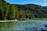 Chiemgau, Fluss, Radweg, Ufer, Wald, forest, gravel, kies, river, salzach, shore