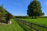 Baum, Chiemgau, Hütte, Wiese, fence, hut, meadow, seebruck. bedaium, zaun