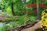 Uferweg im Schlosspark Dennenlohe