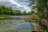See im Schlosspark Dennenlohe