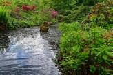 Bachlauf im Schlosspark Dennenlohe