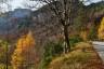 Baum, Berge, Herbst, Strasse, autumn, lärche, mountains, street