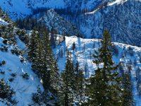 Spuren im Schnee oberhalb der Königsbachalm